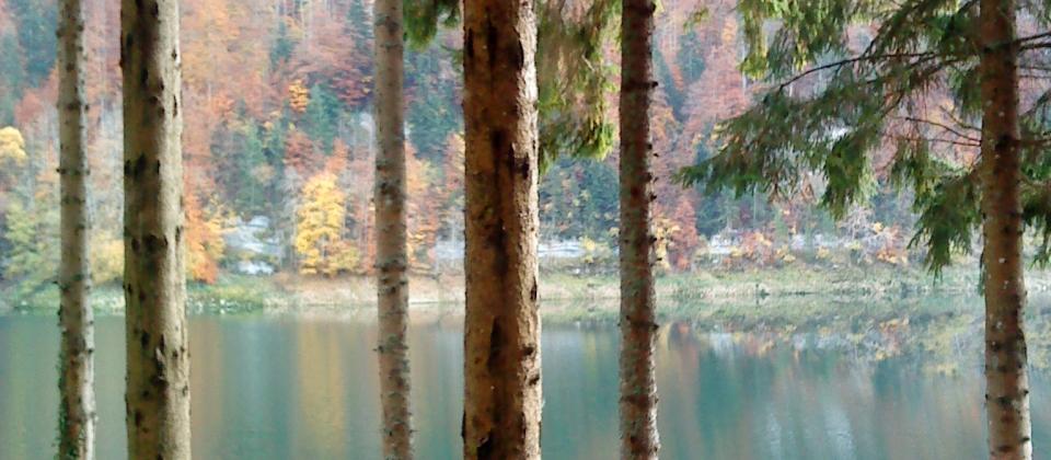 petit coin secret dans les méandres du Doubs